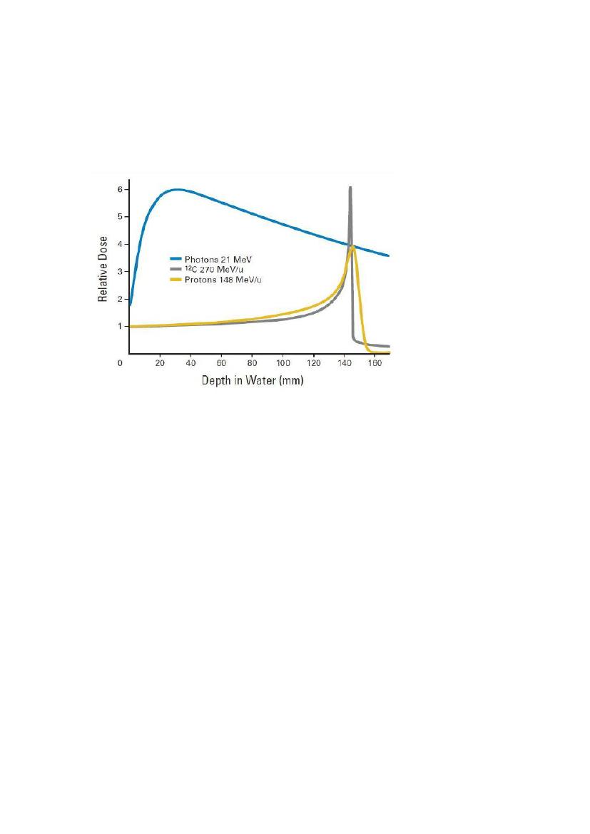 Hvad er forskellen mellem relative og radioaktive dating