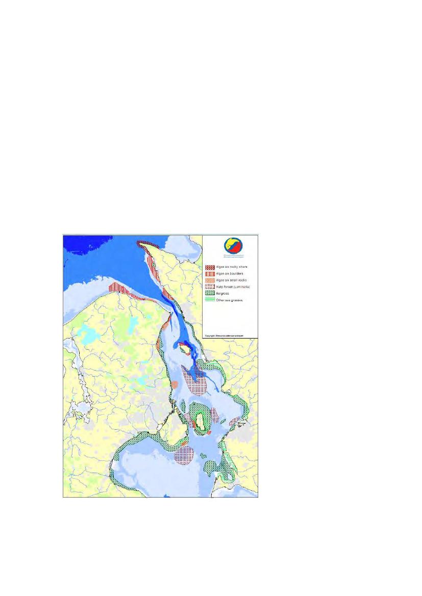 Tilslutte rio de janeiro